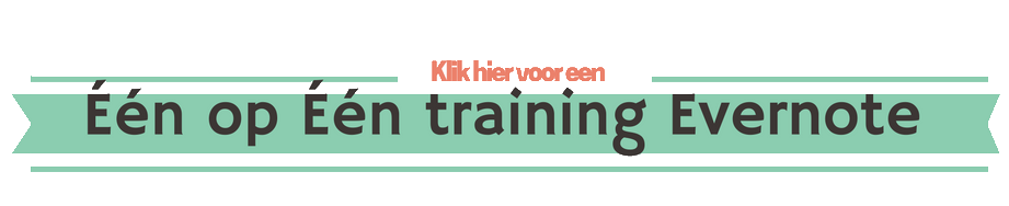 een-op-een-training-transparant